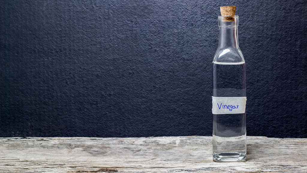 Really, Can Vinegar Cause A Miscarriage