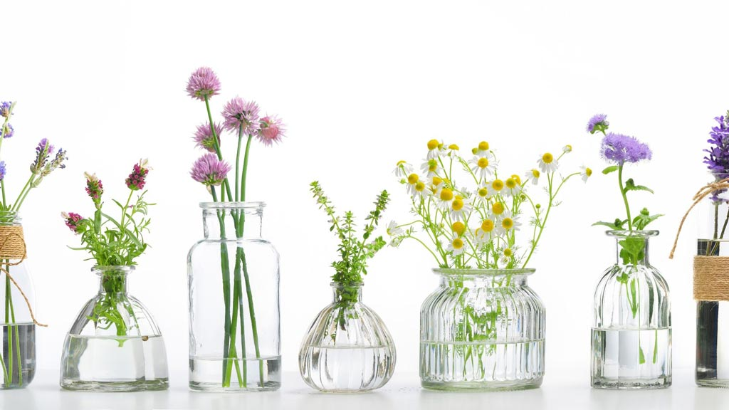 Essential oils for mouth ulcers
